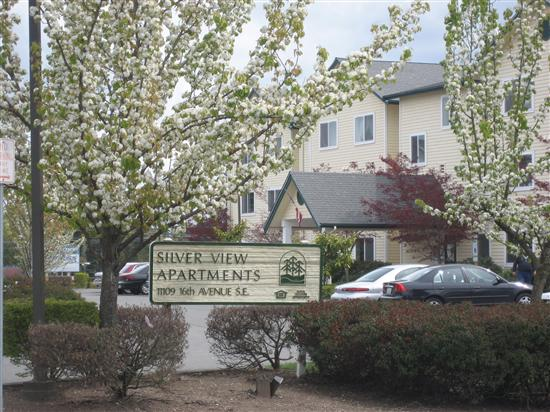 SILVER VIEW SENIOR APTS